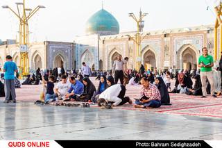 روز خاص زیارتی حضرت رضا