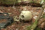 فیلم | قدم زدن در ترسناکترین جنگل دنیا با جنازههای حلقآویز