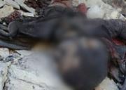 فیلم | اولین تصاویر از اجساد تروریستها در غرب کشور