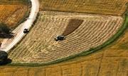 در بخش کشاورزی میتوانیم به صادرات ورود کنیم