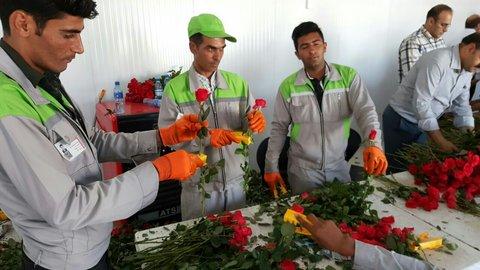 گل فروشهای خیابان