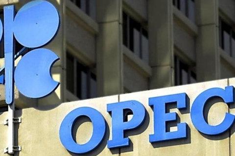اوپک: رشد تقاضای نفت در سال آینده میلادی کند شود