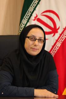 رئیس کمیسیون فرهنگی اجتماعی شورای اسلامی شهر همدان
