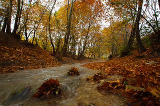 طبیعت پاییزی روستای مهنان در بجنورد