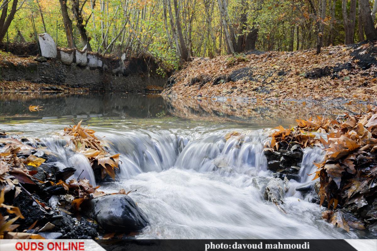 پاییز در روستای دهبار/گزارش تصویری