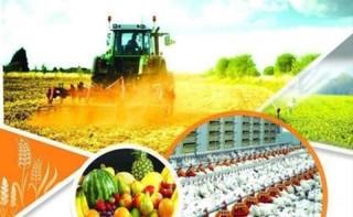 نمایشگاه تکنولوژی های کشاورزی و دام و طیور