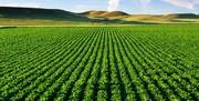 افتتاح و کلنگ زنی ۳۶ طرح عمرانی، اقتصادی و تولیدی بخش کشاورزی