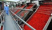 بهرهبرداری از ۳۰۱ واحد تولیدی دربخش صنایع کشاورزی یزد