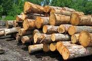 کشف بیش از ۲تن چوب قاچاق در یزد