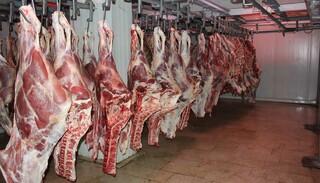 واردات گوشت قرمز از کشورهای همسایه