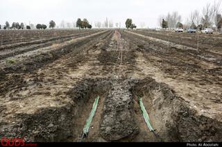 افتتاح پروژه های کشاورزی آستان قدس رضوی
