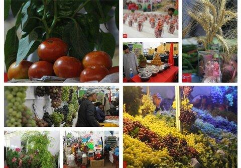 عرضه محصولات کشاورزی
