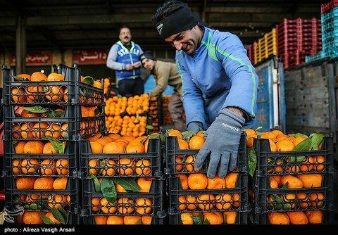 قیمت مصوب میوه