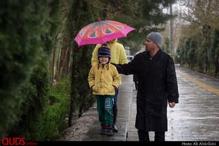 بارش باران بهاری در مشهد