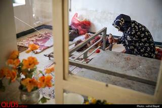 قالیبانی در جهرم