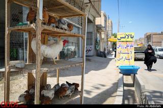 خیابان فردوسی در روستای توس که به آرامگاه شاعر بزرگ ابولقاسم فردوسی ختم میشود.