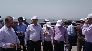 معاون مهندسی و توسعه امور زیربنایی سازمان بنادر و دریانوردی