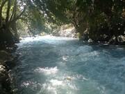 رودخانه کرج همچنان قربانی میگیرد