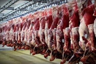گران شدن گوشت قرمز