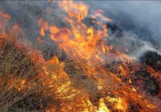 آتش سوزی در کلات