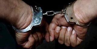 دستگیری یک شبکه ضد انقلاب