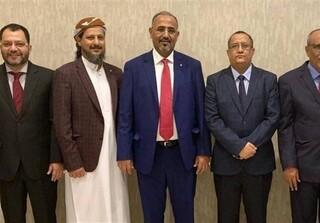 شورای انتقالی یمن