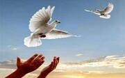 آزادی ۳۰۵ زندانی از زندانهای اردبیل