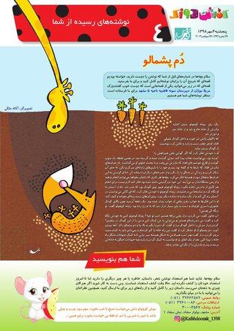 Vij-Kafshdoozak-No-70.pdf - صفحه 4