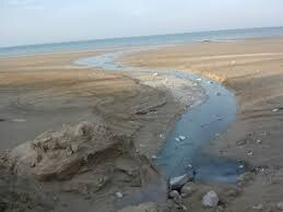 آلودگی نفتی در گناوه