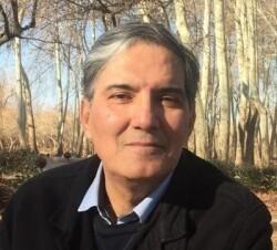 احسان سلطانی، پژوهشگر اقتصادی