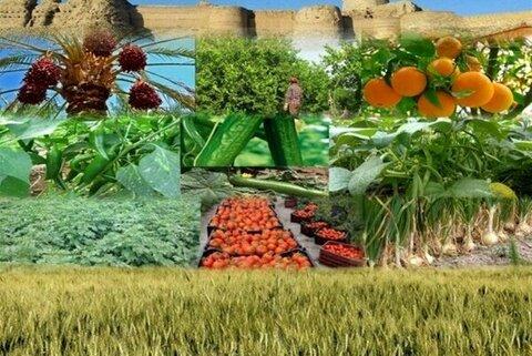 رئیس سازمان جهاد کشاورزی خراسان رضوی