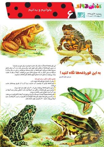 Vij-Kafshdoozak-No-77.pdf - صفحه 6