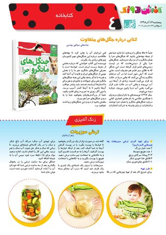 Vij-Kafshdoozak-No-79.pdf - صفحه 4