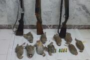 دستگیری ۵شکارچی متخلف در تایباد