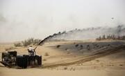 «مالچ پاشی» حیات جانوری خوزستان را تهدید میکند