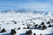 گردشگری زمستانه در خراسان شمالی با مشارکت بخش خصوصی رونق مییابد