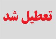 مراکز علمی آموزشی و فرهنگی استان یزد تا پایان هفته تعطیل اعلام شده است