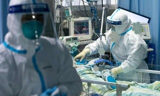 دانشگاه علوم پزشکی تربتحیدریه