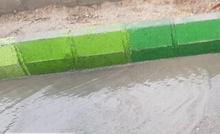 مدیرکل هماهنگی و نظارت بر خدمات شهری شهرداری مشهد