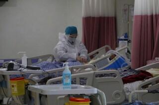 "مسوول کمیته ""طرح همدلی"" بسیج جامعه پزشکی خراسان رضوی"