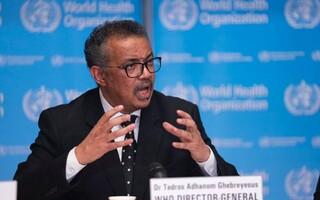 دبیرکل سازمان جهانی بهداشت