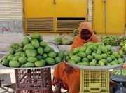 هرمزگان قطب میوههای گرمسیری