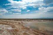 تالاب صالحیه منطقه شکار ممنوع شد