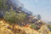 آتشسوزی در کوه خاییز در حال پیشروی است