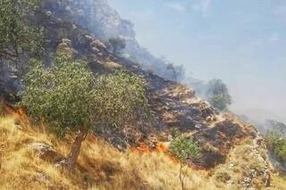 آتش سوزی خاییز
