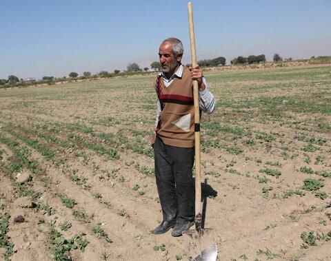 مدیر صندوق بیمه اجتماعی کشاورزان، روستاییان و عشایر خراسان رضوی