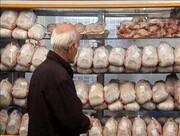 قیمت مرغ در کردستان پر کشید؛ جای نظارت خالی است