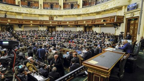 مجلس مصر