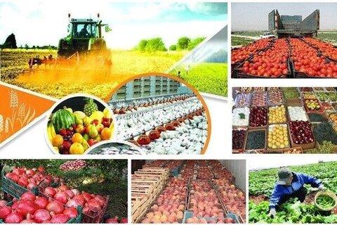 بخش کشاورزی