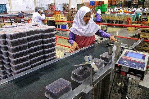 صنعت بسته بندی